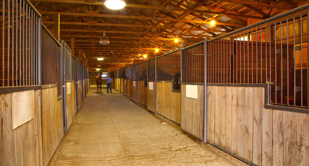 interior view of stables