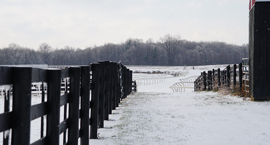 View of the snowy fields behind stables